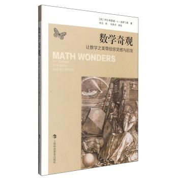 数学奇观:让数学之美带给你灵感与启发