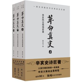 革命真史:辛亥风云现场实录(套装共3册)