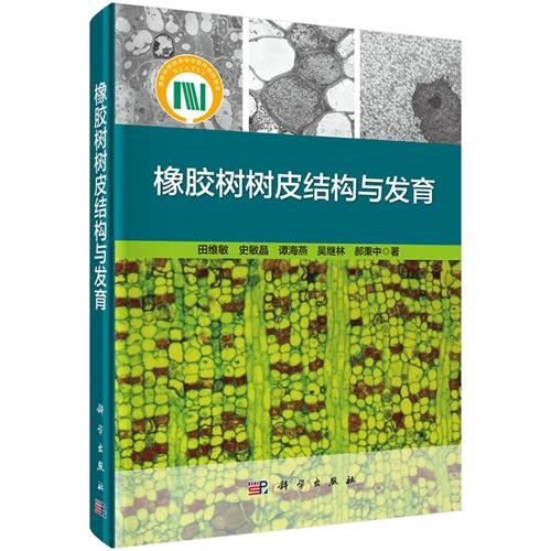 橡胶树树皮结构与发育
