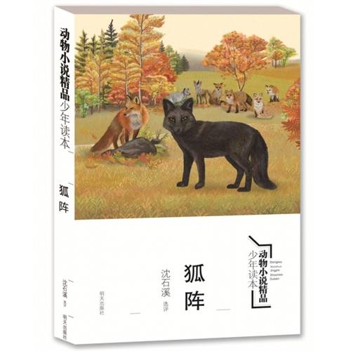 动物小说精品少年读本--狐阵