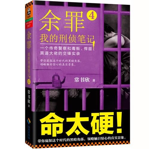 余罪:我的刑侦笔记4