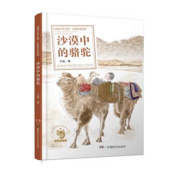 王族作品系列:沙漠中的骆驼骆驼