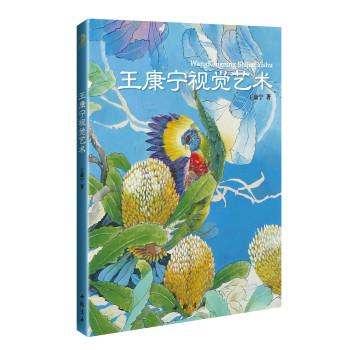 王康宁视觉艺术