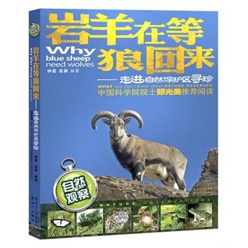 岩羊在等狼回来:走进自然保护区寻珍