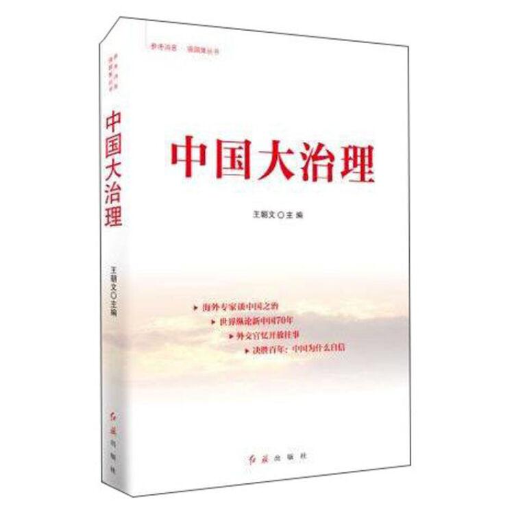 中国大治理