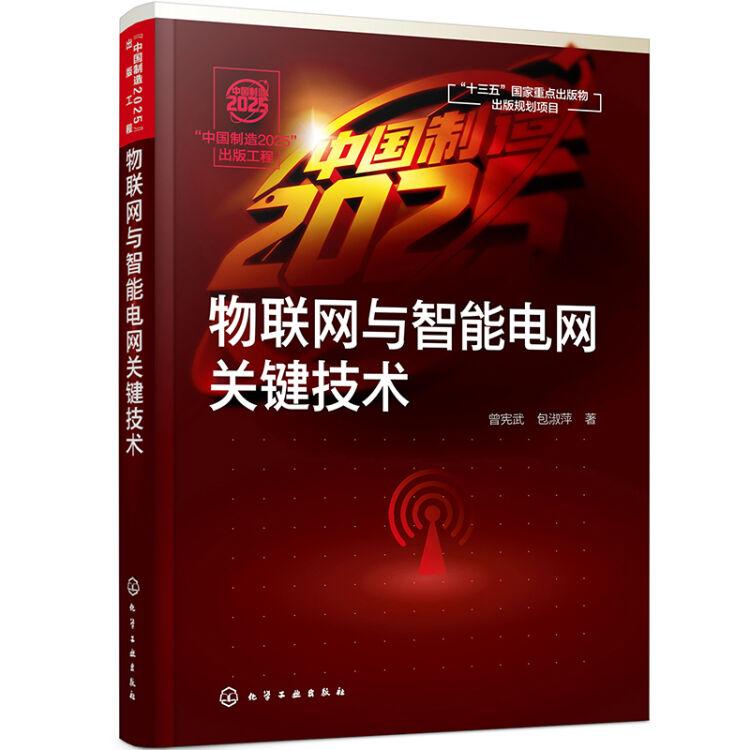 """""""中国制造2025""""出版工程--物联网与智能电网关键技术"""