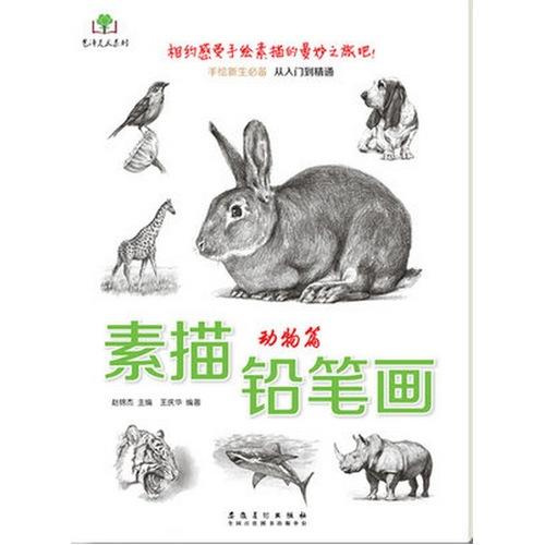 素描铅笔画动物篇