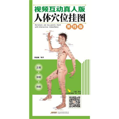 中国首创二维码挂图:视频互动真人版人体穴位挂图男性版