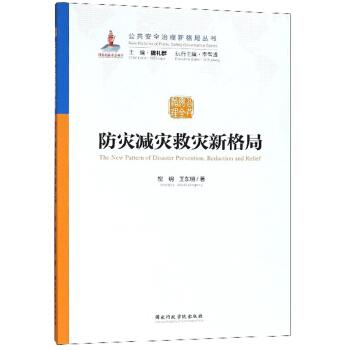 防灾减灾救灾新格局/公共安全治理新格局丛书