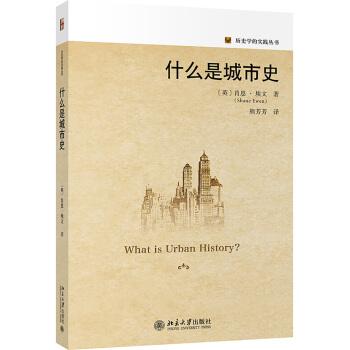 什么是城市史