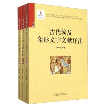 古代埃及象形文字文献译注(套装上中下册)