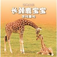 长颈鹿宝宝高又大