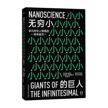 无穷小的巨人 非凡而令人惊奇的纳米技术