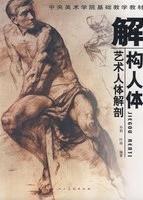 解构人体-艺术人体解剖