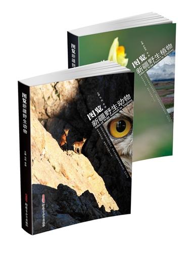 图览新疆野生动植物(套装两册)