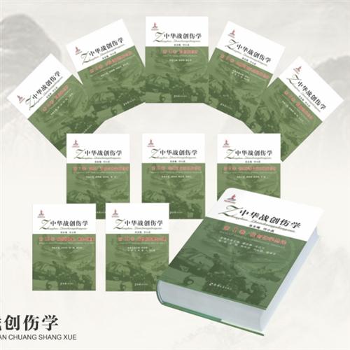 中华战创伤学(11卷)