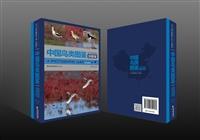 中国鸟类图鉴鸻鹬版