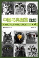 中国鸟类图鉴(猛禽版)