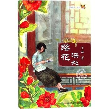 """""""京味童年""""系列:落花深处"""