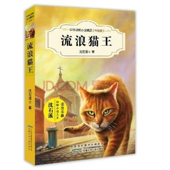 流浪猫王(升级版)