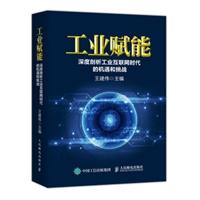 工业赋能:深度剖析工业互联网时代的机遇和挑战(精装)