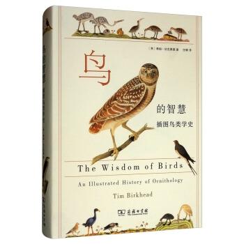 鸟的智慧:插图鸟类学史(精装)