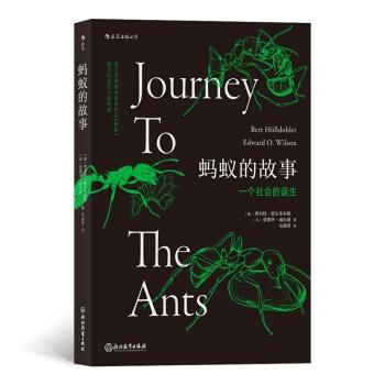蚂蚁的故事