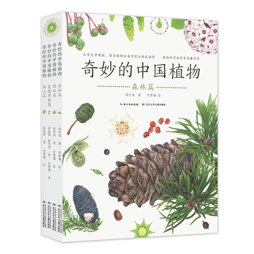 奇妙的中国植物(全4册)
