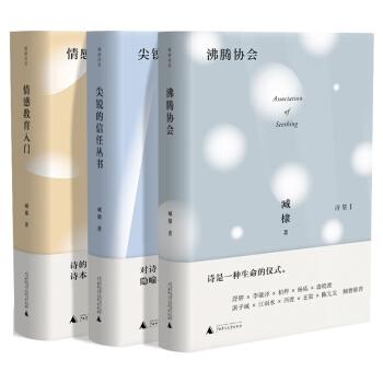 臧棣诗系套装:情感教育入门+沸腾协会+尖锐的信任丛书(全3册)