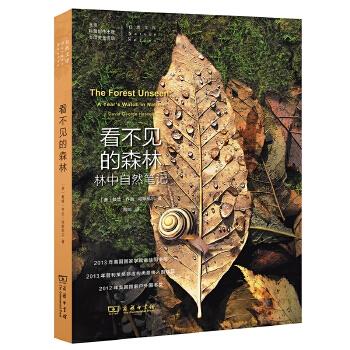 自然文库·看不见的森林:林中自然笔记