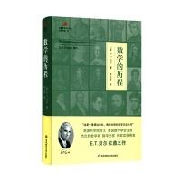 数学的历程(启蒙数学文化译丛)