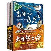 大自然之绘(全7册)