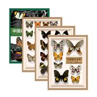 中国蝴蝶图鉴(全4册)