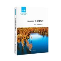 上海大都市土地整治