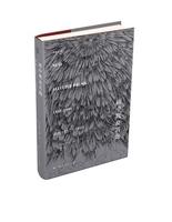 雨中鹰及其他:诗选1957—1994