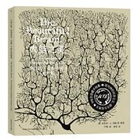 大脑之美:圣地亚哥·拉蒙-卡哈尔绘图集
