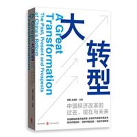 大转型:中国经济改革的过去、现在与未来
